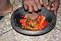 Hot pepper 002.jpg