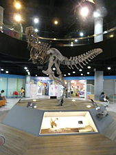 Hyehwa fall 2014 006 (Seoul National Science Museum).JPG