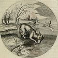 Iacobi Catzii Silenus Alcibiades, sive Proteus- (1618) (14563011388).jpg