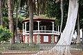 Icod de los Vinos - Plaza Iglesia de San Marcos (RI-51-0007427 2 03.2015).jpg