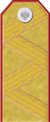 Imperial Russian Army GenBranch 1917 v.png