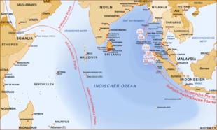 Erwachsene Abschnitte der pazifischen Küste 2011