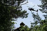 Infantry and aviation working together 140525-A-SJ786-006.jpg