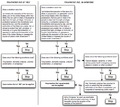 Insurrection Act Flowchart 103106 1842.png