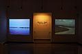Irreversible y Alerta Roja, video instalación, William Paats y Mabel Avila.jpg
