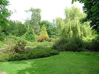 Richmond Park (parke sa Hiniusang Gingharian)