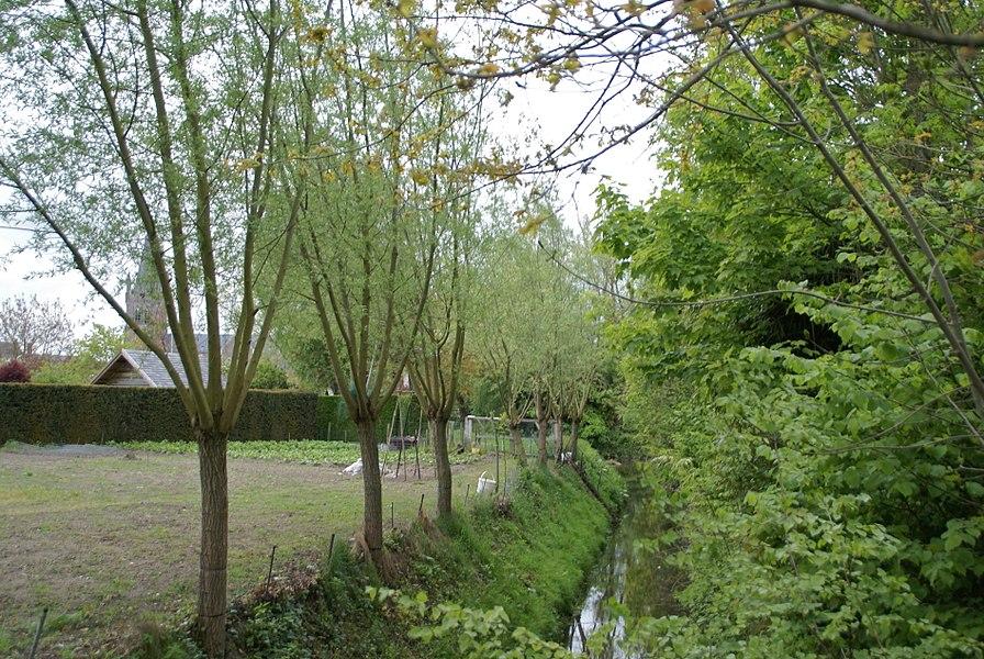 Jabbeke (Belgium): The River Jabbeekse Beek
