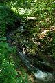 Jablanik - Zapadna Srbija - Izvore reke Jablanice - Detalj 3.jpg