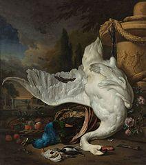 The Dead Swan