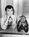 Jerry Mathers Leave It to Beaver 1960.JPG