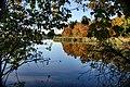 Jesień na stawie Wolno-Nowym - panoramio (1).jpg