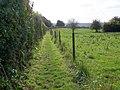 Jubilee Path, Barford St Martin - geograph.org.uk - 1551331.jpg