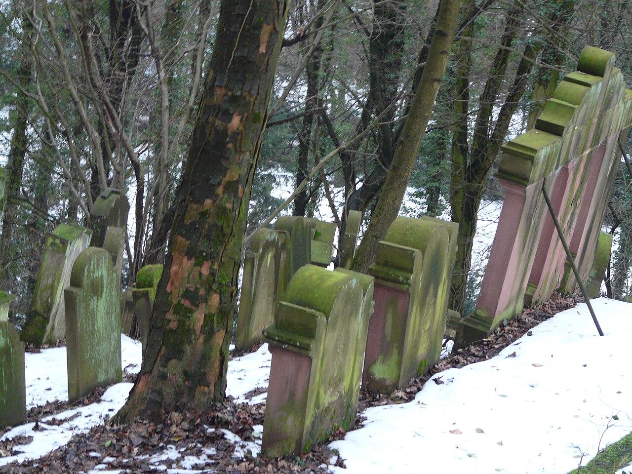 Juedischer Friedhof Hemsbach 15 fcm.jpg