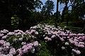 Kámoni Arborétum Szombathely Kamon Arboretum Park 24.jpg