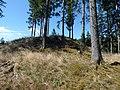 Künstlicher Hügel bei Ruine Dürnstein 02.jpg