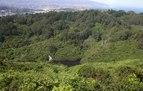 File:Karori reservoir 1988 vs 2012.ogv