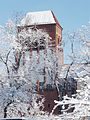 Katholische Kirche Christus König Berlin Adlershof-by-Leila-Paul.jpg