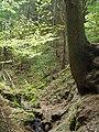 Kavinský potok (4).jpg