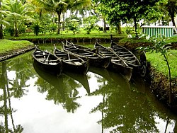 Traditional Kerala Boats