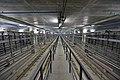 Khovrino (Moscow Metro), reversing headshunt (5).jpg
