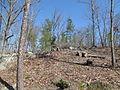 Kings Mountain National Military Park - South Carolina (8557767093) (2).jpg