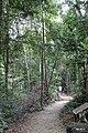 Ko Chang, Ko Chang District, Trat, Thailand - panoramio (41).jpg