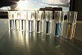Kolorimeetriline valkude sisalduse mõõtmine Bradford meetodil..JPG