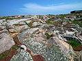 Kolorowe skały na Christianso - panoramio.jpg