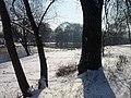 Koniec zimy w połowie marca - Piwonice - 07 - panoramio.jpg