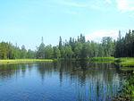 Kostomuksha, Kaba, Republic of Karelia.jpg