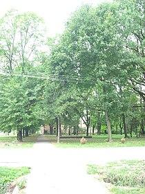 Krajišnik, park in the village centre.jpg