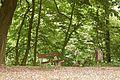 Kreis Pinneberg, Naturschutzgebiet Liether Kalkgrube 22.jpg