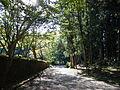 Kumano Kodo Dainichigoe World heritage13.JPG