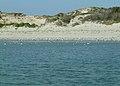 L'estuaire Nord de la Baie de Canche.jpg