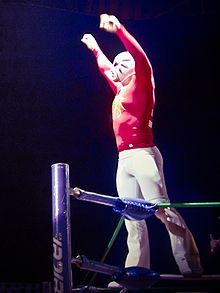 Masked wrestler La Máscara posing on the ring ropes prior to a match.