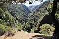 La Palma - Puntagorda - Barranco de Garome (Mirador) 02 ies.jpg