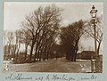 Laan met bomen Midlumerweg bij Harlingen winter (titel op object) Photographieën (serietitel), RP-F-2001-17-12-16.jpg