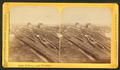Lake, railways and elevators, from Robert N. Dennis collection of stereoscopic views.png