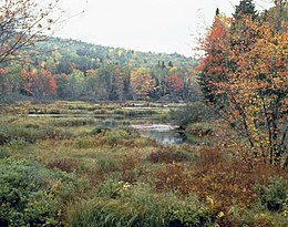 Lake Umbagog national wildlife refuge.jpg