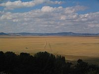 Lake george nsw march 2006.jpg