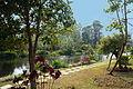 Laos Plateau des Bolovens.-Pathounphone (1).jpg