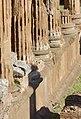 Largo di Torre Argentina (31585546877).jpg