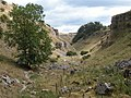 Lathkill Dale looking downdale, about 1 km from Monyash, Derbyshire, UK.JPG