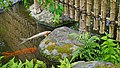 Le jardin Kôko-En (Himeji, Japon) (42748750812).jpg