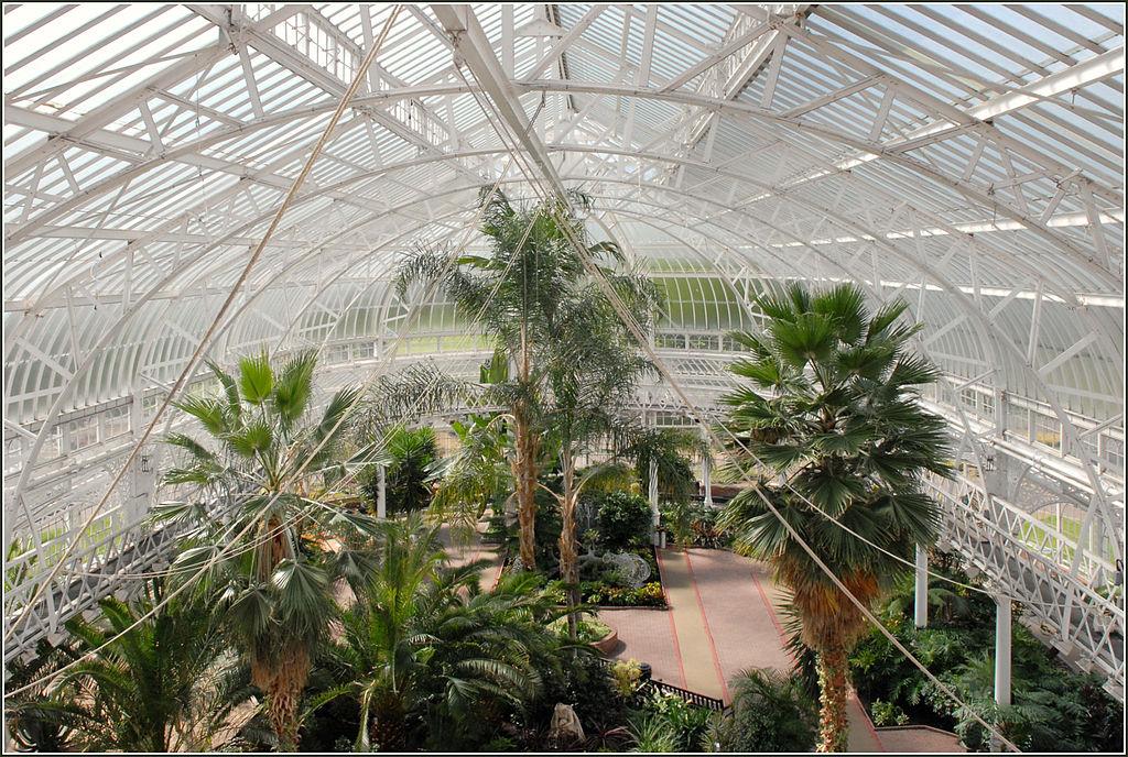 Le jardin d'hiver du palais du peuple (People's Palace) à Glasgow. Photo de Jean Pierre Dalbéra.