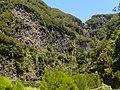 Levada do Risco, Madeira, Portugal, June-July 2011 - panoramio (16).jpg