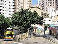 Li Sing Primary School 1.jpg