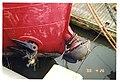 Lichtschip - 353677 - onroerenderfgoed.jpg