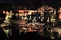 Light And Pond (239905343).jpeg