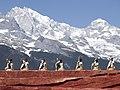 Lijiang Yunnan China-Naxi-people-with-drums-01.jpg